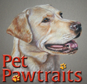 Pet Pawtraits