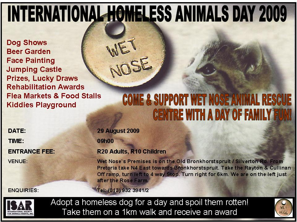 Homeless Animals Poster